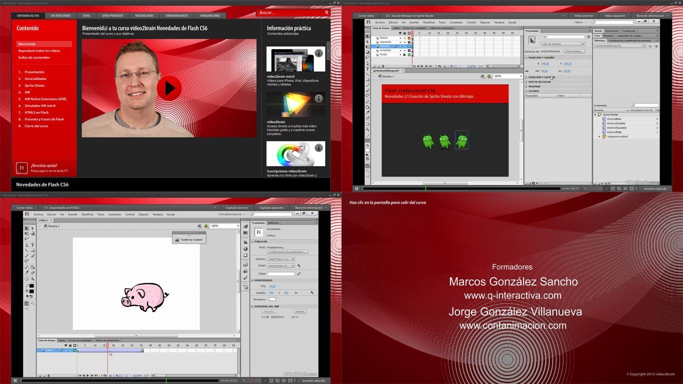 Adobe Flash Professional CS6 12.0.2.529